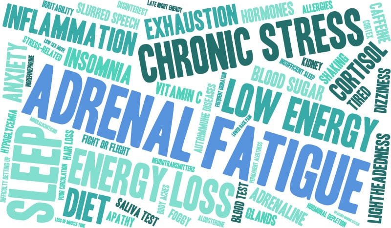 Health and Vitality Center Holistic Doctor Los Angeles Adrenal Fatigue Symptoms Treatments