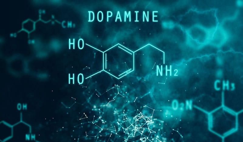 graphic of dopamine molecular equation for neurotransmitter evaluation